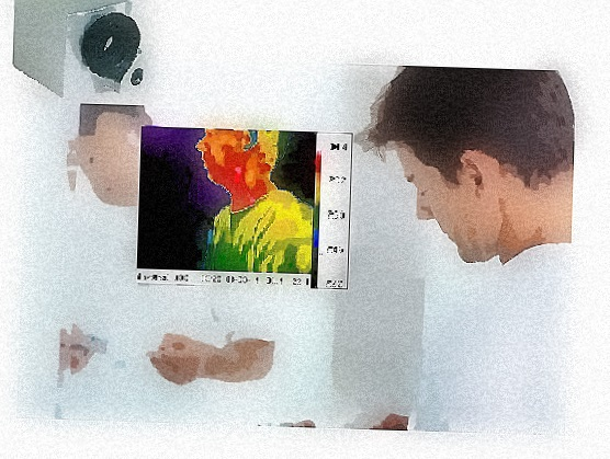 mirror thermal image system